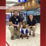 TSA Canine Halloween Costume Contest