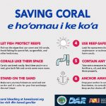 State Launches 'Coral Pledge' to Save Reefs