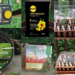 Barefoot Gardener: Holiday Gifts for the Lazy Gardener