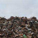 Opinion: Small Steps to Mālama Āina Create Large Impact