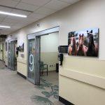 New ER to Open at North Hawai'i Community Hospital