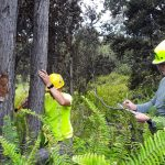 Efforts to Protect VNP from ROD Ongoing