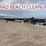 Hundreds Gather for West Hawai'i Beach Cleanup