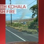 Over 200 Acres Burned in North Kohala