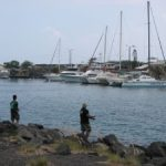 High Bacteria Levels Detected at Honokohau Harbor