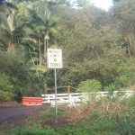 Loss of Ka'ahakini Stream Bridge Concerns Hakalau Residents