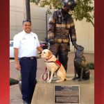 First Certified Arson K9 in State Dies