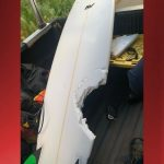 Shark Attacks Surfer at Honolua Bay on Maui