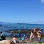 Kahalu'u Beach Park Closed Due to High Surf Advisory