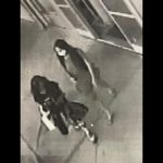 2 Women Sought in Theft at Kona Store