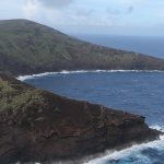 Watch: Lehua Island Now Rat Free