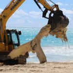 VIDEO: Waimanalo Bay Remained Closed Following Whale Carcass Removal
