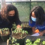 Hawai'i Island School Garden to be Featured in National Broadcast