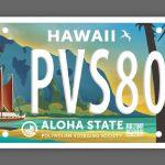 Governor, Lawmakers Approve PVS Specialty License Plate