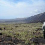Earthquake Rumbles Under Kīlauea's South Flank