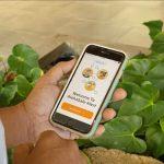 AlohaSafe Alert Reaches 1 Million Activations