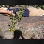 Volcano Watch: 1790 Was a Bad Year at Kīlauea